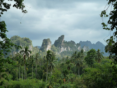 Khao Sok National Park <3